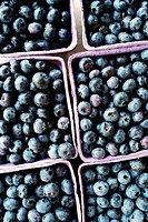 Close up of punnets of blueberries