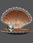 art, 3D graphics, Jewel, skull, shell, jewelry, jewelry shell, mysticism