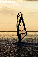 windsurfer on the sea bay surface