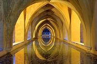 Royal Alcazar,`Baños de Doña Maria de Padilla´, baths of Doña María de Padilla,Sevilla,Andalucía,Spain
