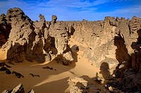 Stone Forest; Maridet; Libyan Arab Jamahiriya; Libyan Desert