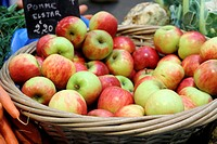 Basket filled with bright red and green apples., Provins market, France
