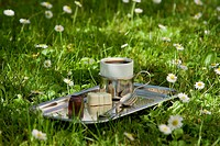 Coffee tray in the field