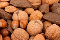 background with different kind of nuts
