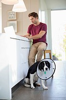 Man using laptop by dog wearing cone