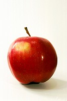 DEU, 2001: Apple (Malus domesticus), variety Wiener Rosenapfel.