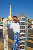 Myanmar, Yangon, Sule Pagoda, Souvenir Postcard and Banknote Vendor