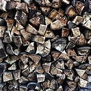 Close up logs in wood pile