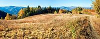 Autumn mountain Nimchich pass (Carpathian, Ukraine)