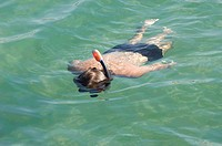 Man floats in the sea with tube and look under wa