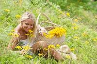 Austria, Salzburg, Mid adult woman in alpine meadow with arnica