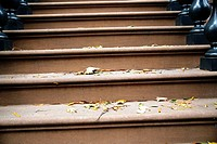 Fallen Leaves and Twigs Scattered on the Steps of Brownstone Town House, New York, NY, USA