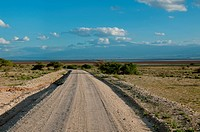 Empty Road In Kilimanjaro At Amboseli, Kenya
