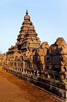 Sculptures of Nandi Bull around ancient Shore Temple at Mahabalipuram, Kanchipuram District, Tamil Nadu, India