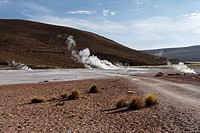 Hot springs of Banos de Puchuldiza in the Volcan Isluga National Park at sunrise, Geyser, Altiplano, Chile, South America