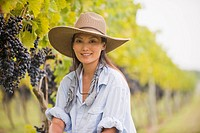 Asian woman picking grapes in vineyard