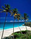 tropical beach, Bottom Bay, Barbados
