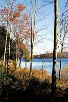 A bright, late-autumn day has left a few fall colors behind at Lake Nockamixon, Pennsylvania, USA.