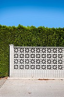 Wall and hedge