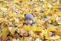Young boy covered with autumn leaves.