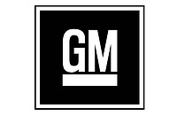 Germany, Bonn, 19.01.2012 The logo of the car brand GM, USA - BONN, GERMANY, 19/01/2012