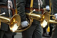 33. Austrian brass celebration in Vienna - 01/01/2013