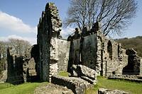 Great Britain, England, Devon, Okehampton, Okehampton Castle, ruins