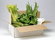 Fresh green vegetables in cardboard box