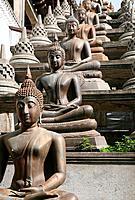 Statues of the Buddha in the lotus position, Gangaramaya Buddhist Temple, Colombo, Sri Lanka.