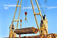Ship mounted cranes lifting logs from dock onto log ship for transport to China; Port of Port Angeles, Washington USA.