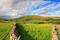 Kisdon Hill, Thwaite, Swaledale, Yorkshire Dales, England, UK.