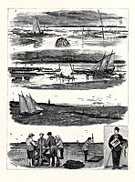 Oyster Culture At Arcachnon: 1. The Oyster Parc At Half Low Tide, Showing The Tops Of The Enclosures; 2. Low Tide, Gathering The Young Oysters; 3. The...