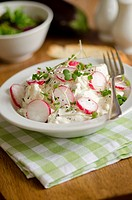 Summer potato salad topped with radish and cress.