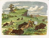 Hunting buffalo with a colt revolver in North America.