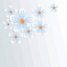 Floral background with camomiles and place for text