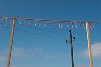 power poles - 01/01/2009