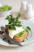 Toast with mozzarella, mushy peas and broad beans.