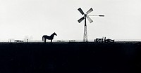 A horse stands silhouetted near a wind tower and various wooden fences in a misty field.