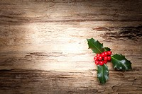 Christmas holly on wooden background.