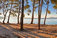 Early morning view of Formentor beach, Cala Pi de la Posada. Pollensa area. Majorca, Balearic islands, Spain