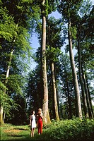 two young women walking in Reno-Valdieu forest, Regional Natural Park of Perche, Orne department, Lower Normandy region, France, Western Europe.