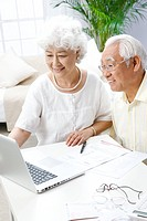 Happy elderly couple using a computer