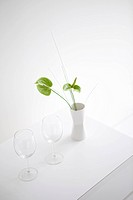 Wineglasses by Vase of Flowers