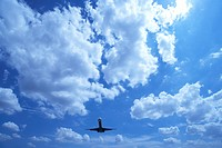 Commercial airplane flying, Japan
