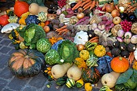 Colourful display of different varieties of vegetables at a market stall, Colmar, Alsace, France
