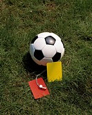 Fussball, Symbolfoto, Ball auf dem Rasen, Rote und Gelbe Karte, Schiedsrichterpfeife, football, symbol, ball, Red and Yellow Card, referee whistle - ,...