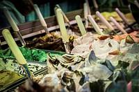 Tradicionals Ice creams, Florence, Tuscany, Italy, Western Europe