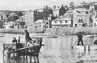 Prawn Fishing at St Ives. St Ives, Cornwall, c1925