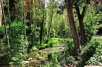 Hoz del rio Gallo. Corduente, Guadalajara, Spain