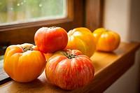 Fresh heirloom tomatoes on a kitchen window sill